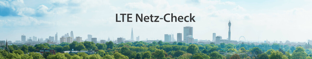 Netz-Check